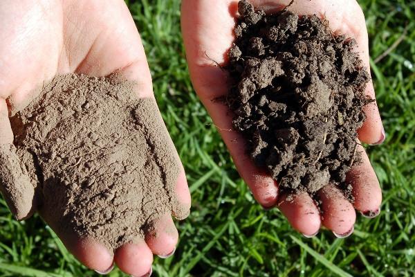 افزایش ظرفیت باروری خاک