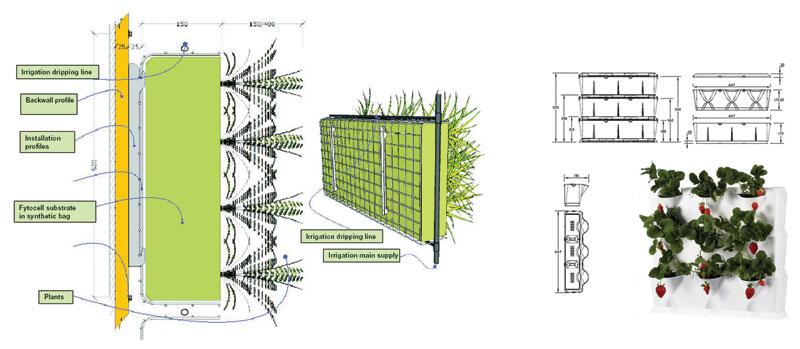 ساخت دیوار سبز